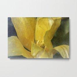 Etched Tulip Metal Print
