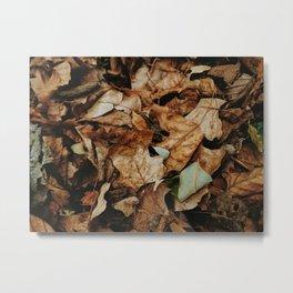 Pile of Leaves Metal Print