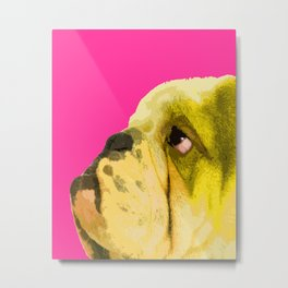 Pop art English bulldog portrait Metal Print