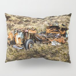 All there is left. Pillow Sham