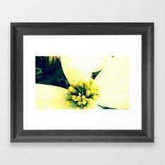 Dogwood Lullaby Framed Art Print