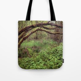 Arch of Jericho Tote Bag