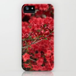 The Silence Of Growing Things iPhone Case