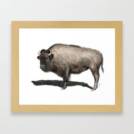 Rustic Buffalo Framed Art Print