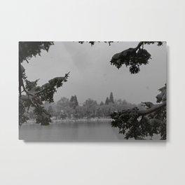 Snowy Virginia Lake Metal Print