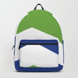 flag of burlington Backpack
