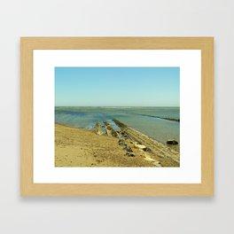 Bowling Ball Beach VIII Framed Art Print