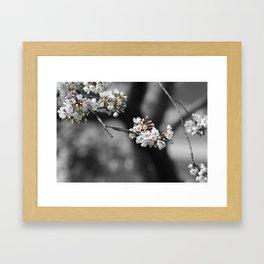 Blossoms in Black and White Framed Art Print