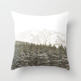 Forest and rocks Throw Pillow