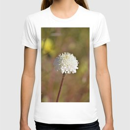 Desert White Wildflower Bloom by Reay of Light Photography T-shirt