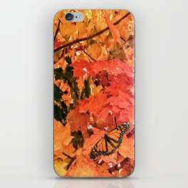 Butterfly in Fall  iPhone Skin