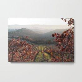 Fall Tuscany Metal Print