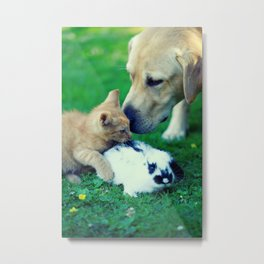 Rabbit Dog Cat Metal Print