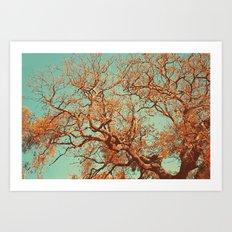 Orange. Art Print