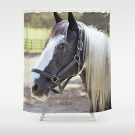 Equine Beauty Shower Curtain