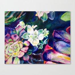 lovely cactus Canvas Print