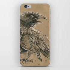 Raven / Crow iPhone & iPod Skin