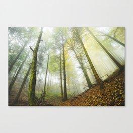 Interlude v3 Canvas Print
