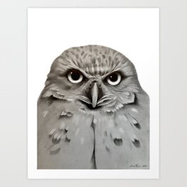 Burrowing Owl in Graphite Art Print