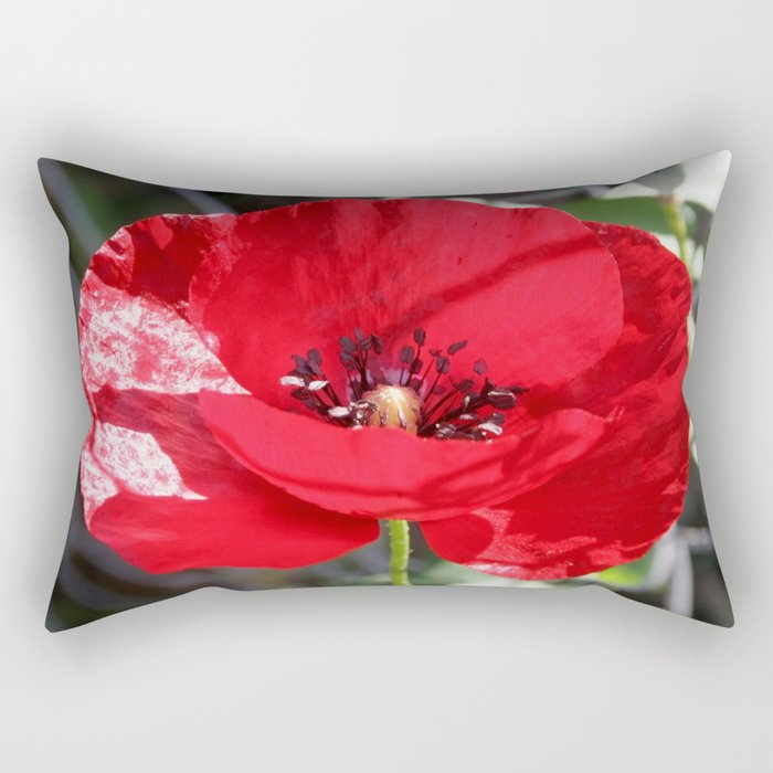 Single Red Poppy Flower  Rectangular Pillow