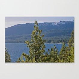 Trees + Tahoe II Canvas Print