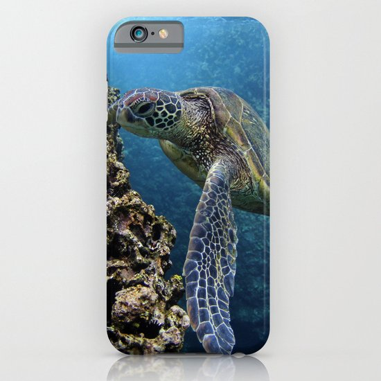 green sea turtle iphone amp ipod case by heidi ingram society6