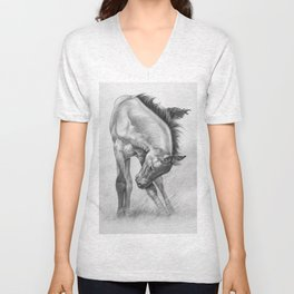 Young, Wild and Free Unisex V-Neck