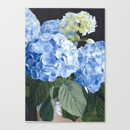 Tranquil Beauty Canvas Print