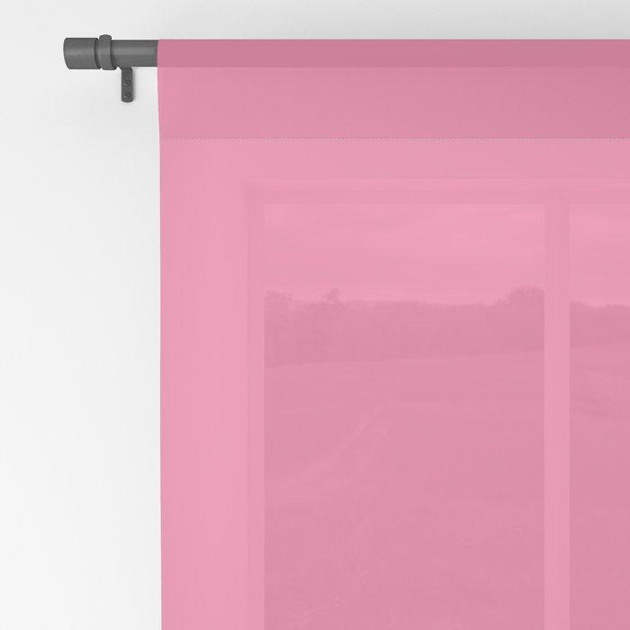 Cat on Deep Pink Sheer Curtain
