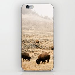 A Snow Storm Blowing In iPhone Skin