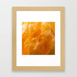 Citrus Gem Framed Art Print