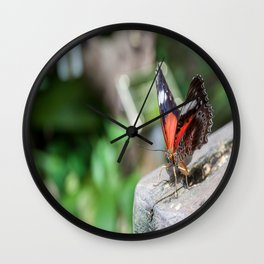 Red Lacewing Butterfly Wall Clock