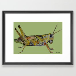 Hopper Framed Art Print