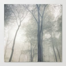 Cathedral of Trees Canvas Print