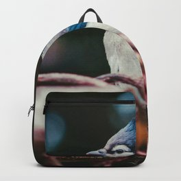 Blue Jay (Color) Backpack