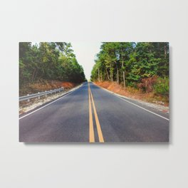 Empty road Metal Print