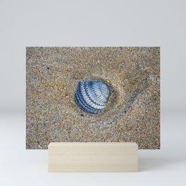 INDIGO COCKLE SHELL ON SAND Mini Art Print
