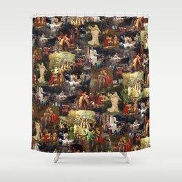 Arthurian Romances Shower Curtain