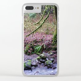 Portland Park Perfection Clear iPhone Case