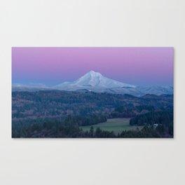 pink sky Canvas Print