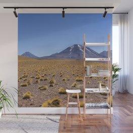 Atacama views Wall Mural
