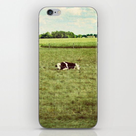 resting cow iPhone & iPod Skin