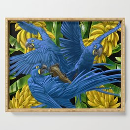 Hyacinth Macaws and bananas Stravaganza (black background). Serving Tray