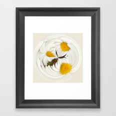 Pick Me Round - Daisy Framed Art Print