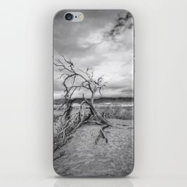Death Valley I iPhone Skin
