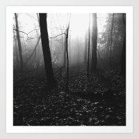 Foggy Forest Art Print