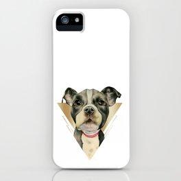 Puppy Eyes 4 iPhone Case