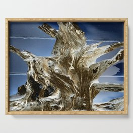 Gnarled Wood Serving Tray