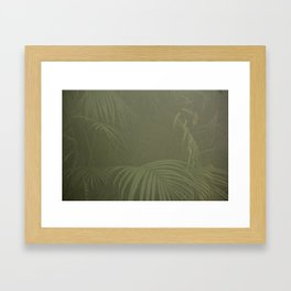 There Was A Lot Of Mist On My Lens When I Took This Framed Art Print