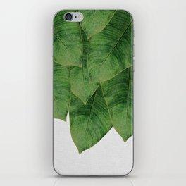 Banana Leaf III iPhone Skin